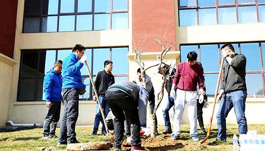 2019年锦泽实业集团植树活动