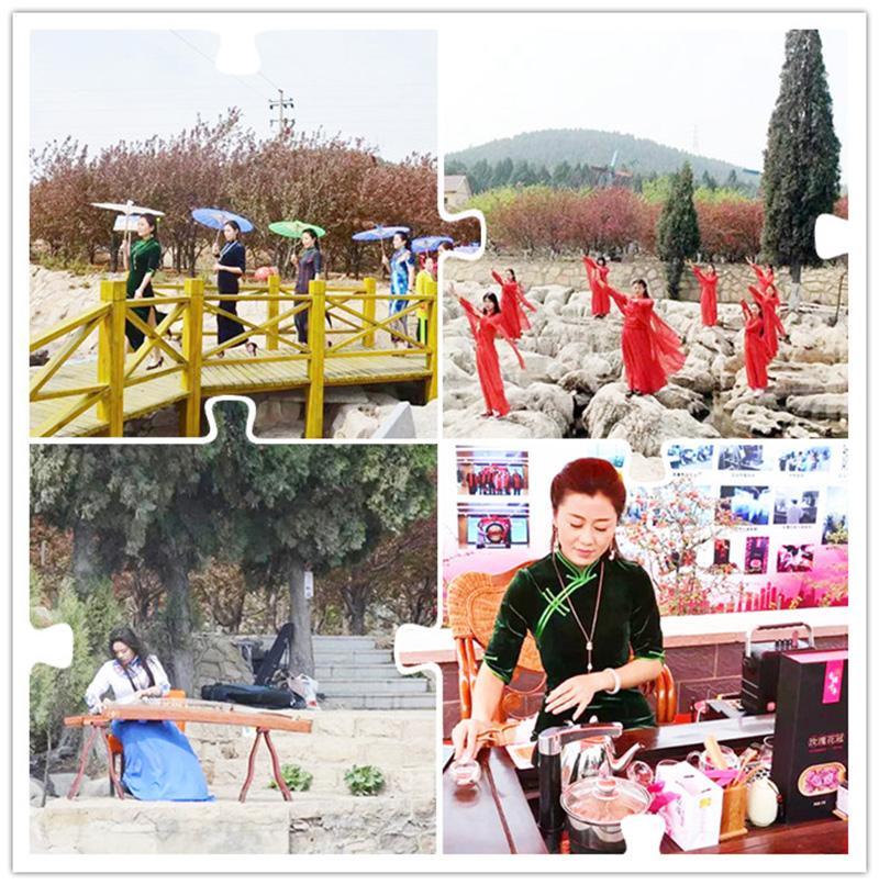 平阴海棠节